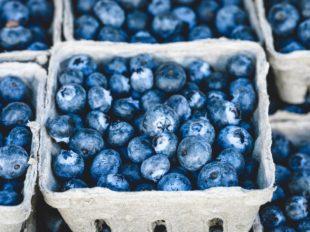 blue-1326154_1280